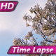 Spring Clouds - VideoHive Item for Sale