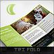 Luna Tri Fold Brochure - GraphicRiver Item for Sale