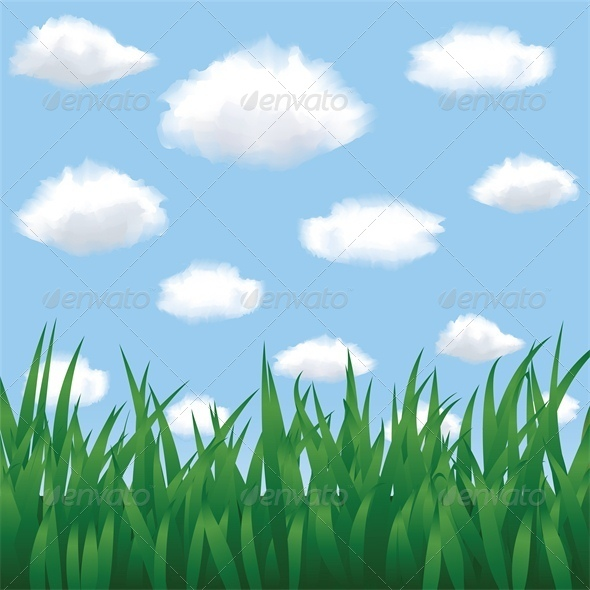 Green Grass, Blue Sky and Clouds in Summertime - Flowers & Plants Nature