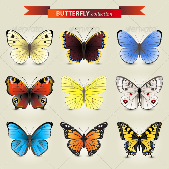 Butterfly Collection - Animals Characters