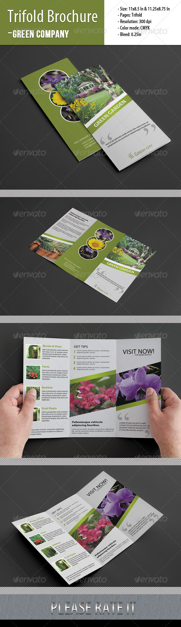 Trifold Brochure For Green Company - Corporate Brochures