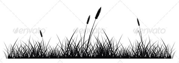 Grass Silhouette  - Seasons Nature