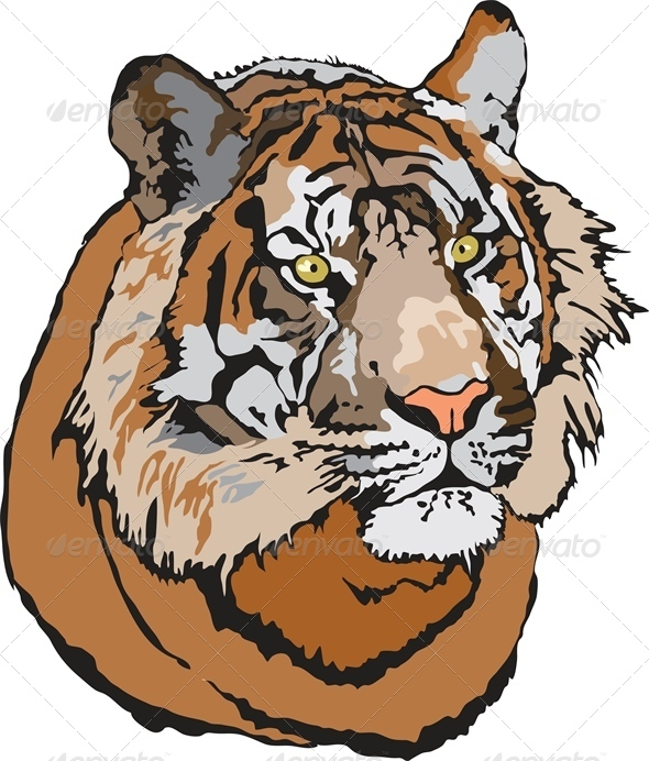 Head of Tiger - Animals Characters