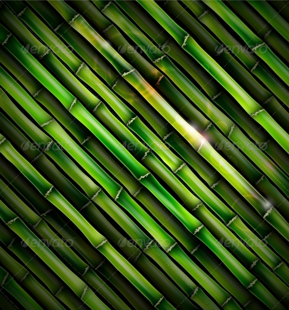 Background with Bamboo - Flowers & Plants Nature