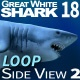 Shark 18 Side View - VideoHive Item for Sale