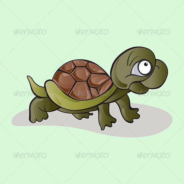 Kid Tortoise - Animals Characters