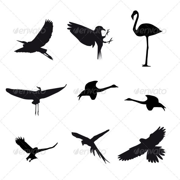 Set of Different Birds - Decorative Symbols Decorative