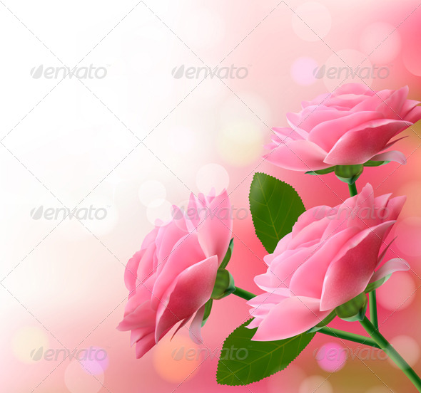 Holiday Background with Three Pink Flowers - Flowers & Plants Nature