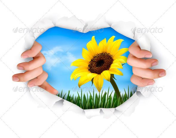 Nature Background with Hands Ripping a Paper - Nature Conceptual
