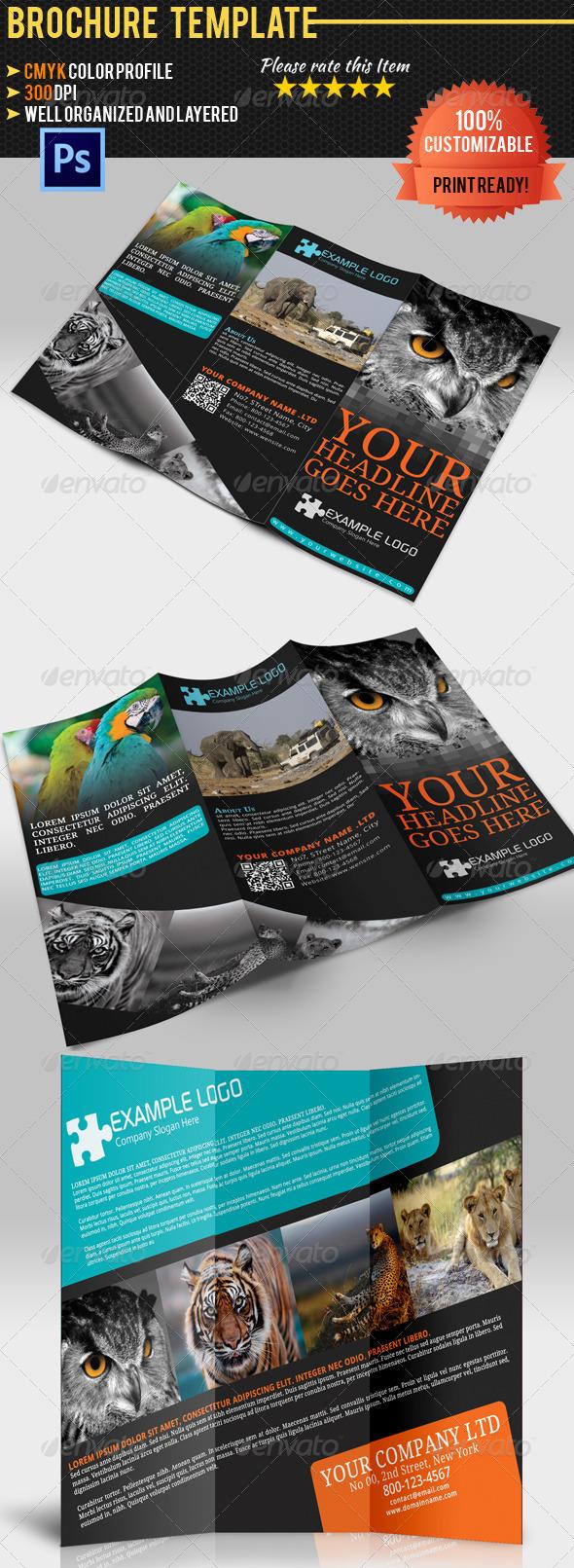 Adventure Travel Brochure Templatre - Brochures Print Templates