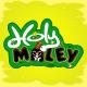 Holy Moley Game Pack Bundle Set - GraphicRiver Item for Sale