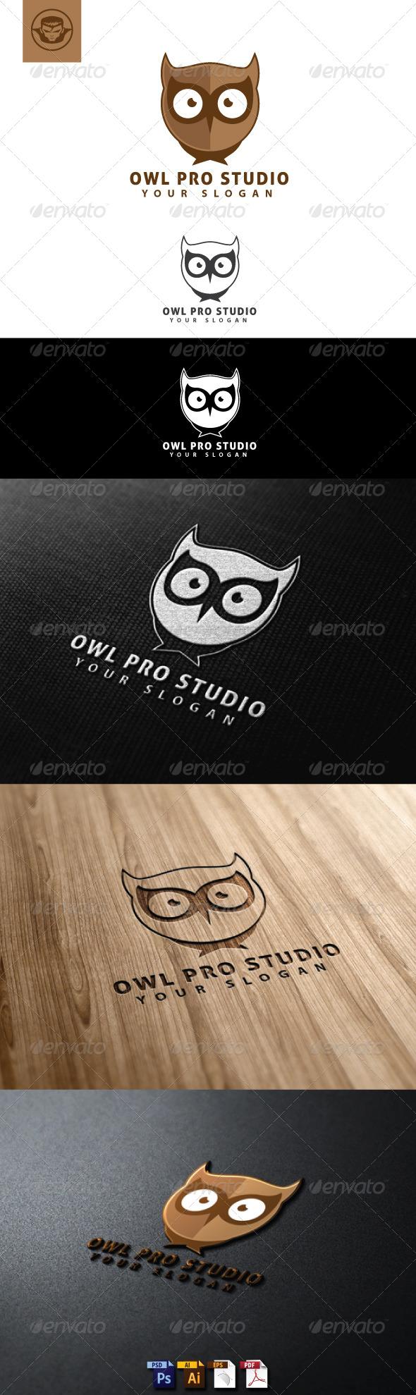 Owl Pro Studio Logo Template - Animals Logo Templates