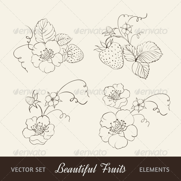 Strawberry Elements on Sepia Background. - Flowers & Plants Nature