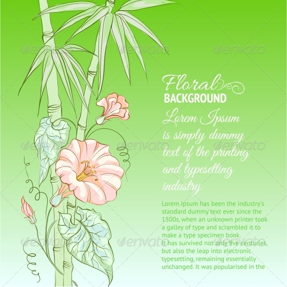Bindweed Flower and Bamboo - Flowers & Plants Nature