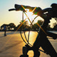 Bicycle and Skateboard Area - VideoHive Item for Sale