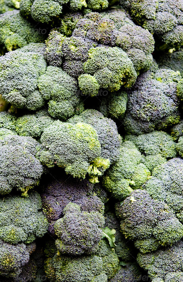 Broccoli calabrese - Stock Photo - Images