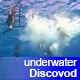 Group of Divers Preparing to Dive - VideoHive Item for Sale