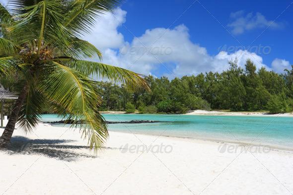 mauritius beach - Stock Photo - Images