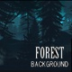 Forest Background - VideoHive Item for Sale