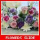 Flowers Slide - VideoHive Item for Sale