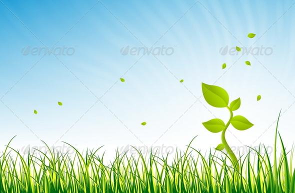 Joy of Nature - Flowers & Plants Nature