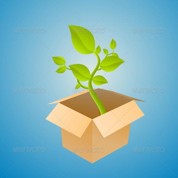 Plant Box - Flowers & Plants Nature