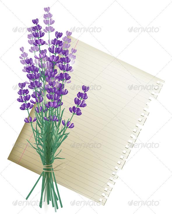 Lavender Bunch - Flowers & Plants Nature