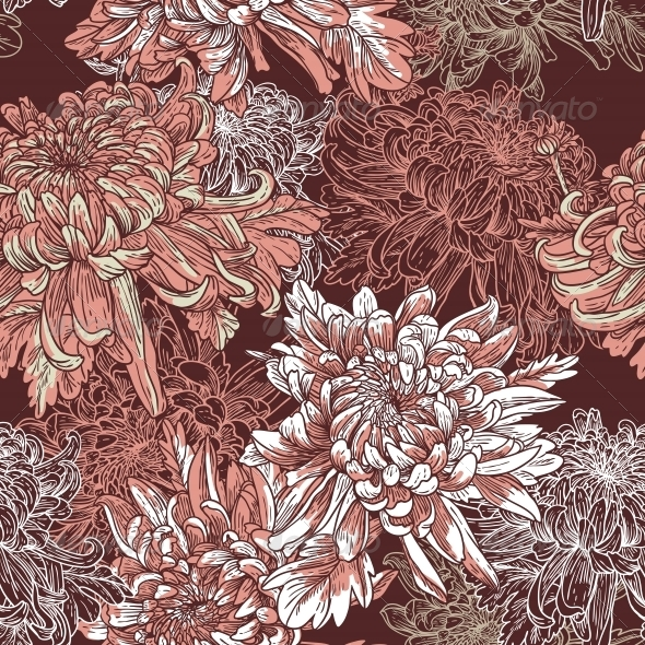 Floral Background with Blooming Chrysanthemums - Flowers & Plants Nature