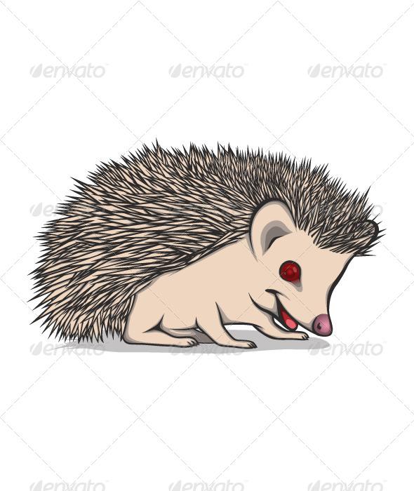Little Hedgehog - Characters Vectors