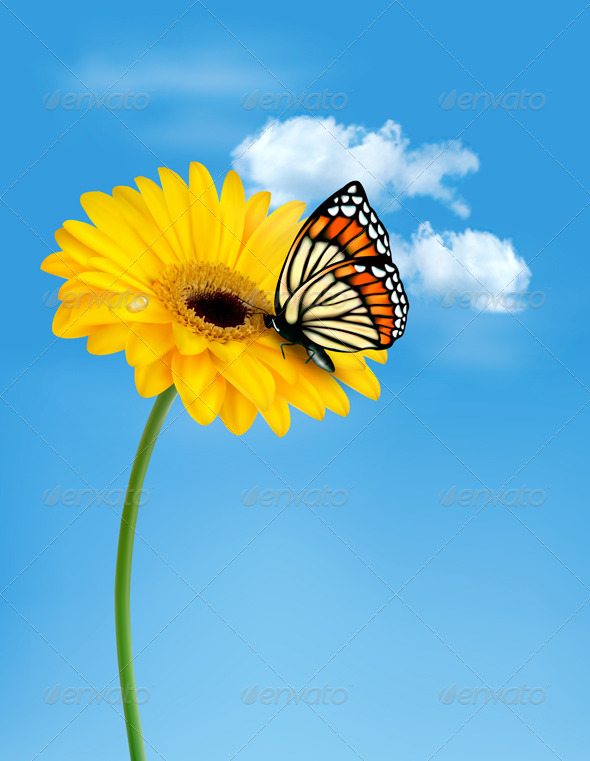 Nature Summer Yellow Flower with Butterfly - Flowers & Plants Nature