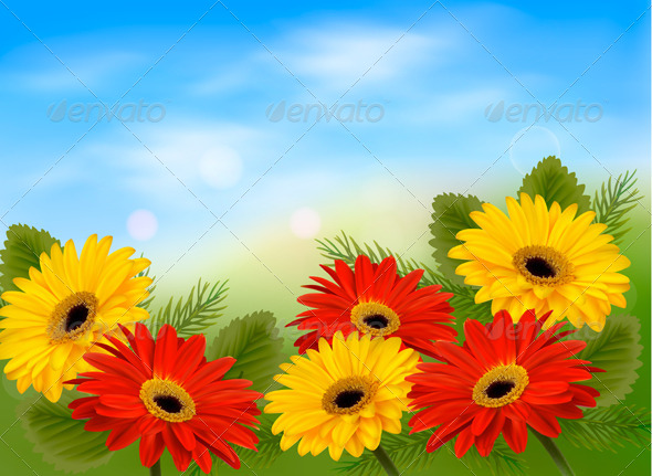 Nature Background with Colorful Flowers  - Flowers & Plants Nature