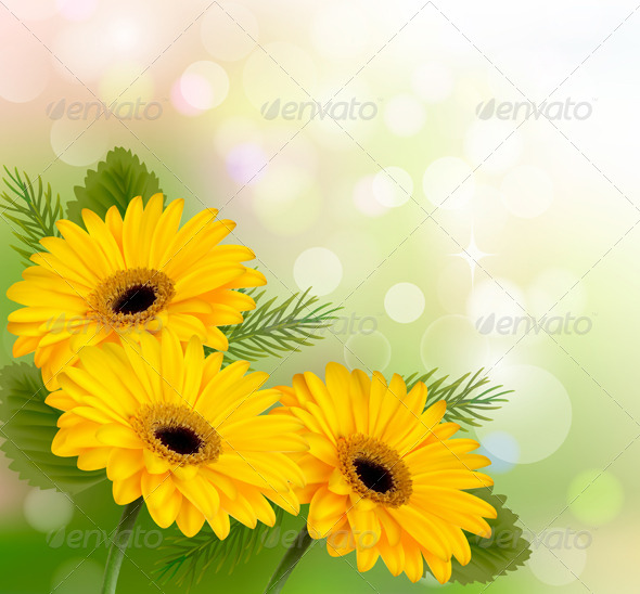 Nature Background with Yellow Flowers - Flowers & Plants Nature