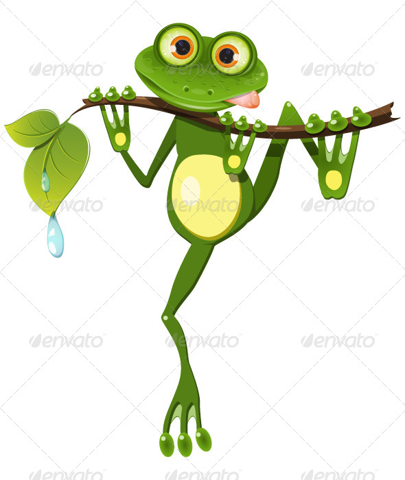 Frog on a Branch - Animals Characters