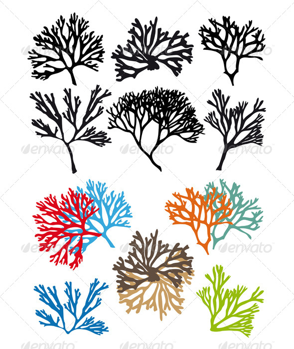 Corals Reefs Vector Set - Animals Characters