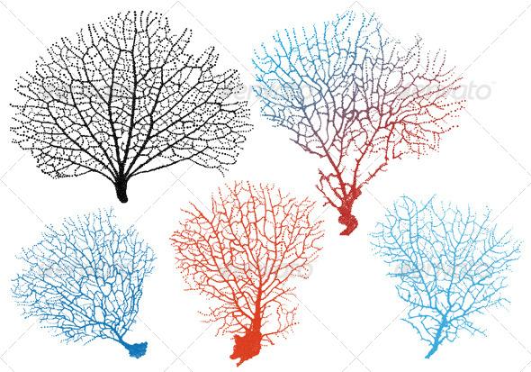 Sea Fan Corals Vector Set - Animals Characters