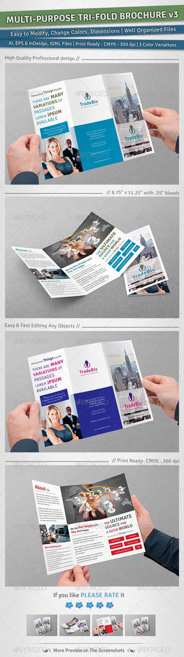 Multi-purpose Tri-Fold Brochure | Volume 3 - Corporate Brochures