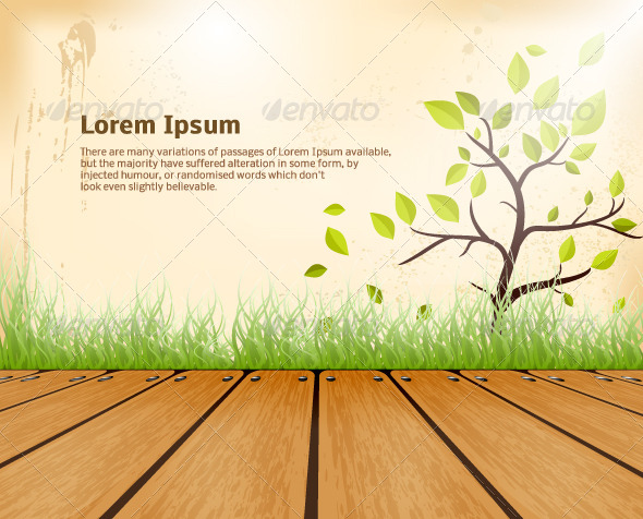 Summer Background - Nature Conceptual