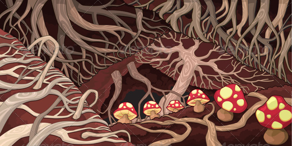 Underground with Roots and Mushrooms.  - Landscapes Nature
