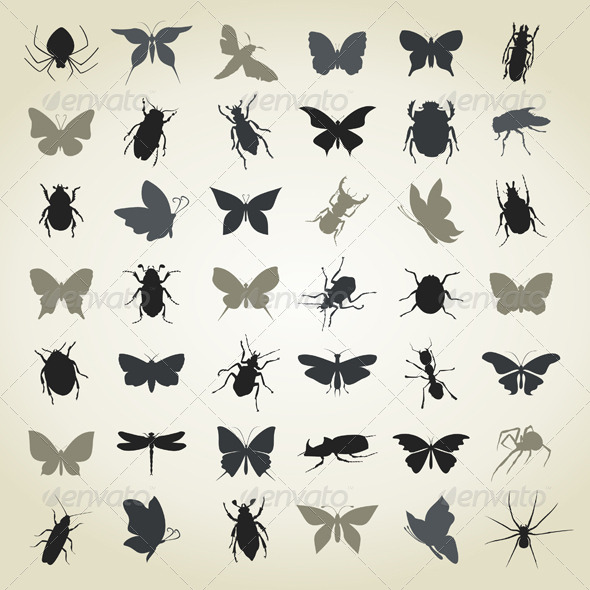 Collection of Insects4 - Animals Characters