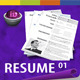 GD Professional Resume Set 01 - GraphicRiver Item for Sale