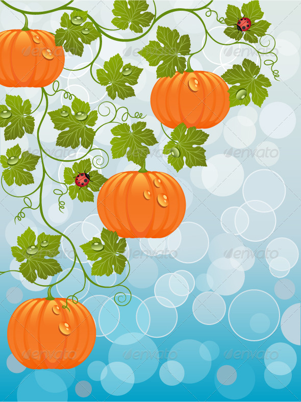 Floral background with a pumpkin - Flowers & Plants Nature