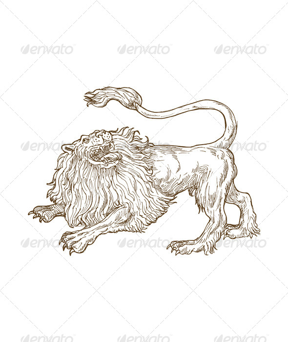 Lion Big Cat Sketch - Animals Characters