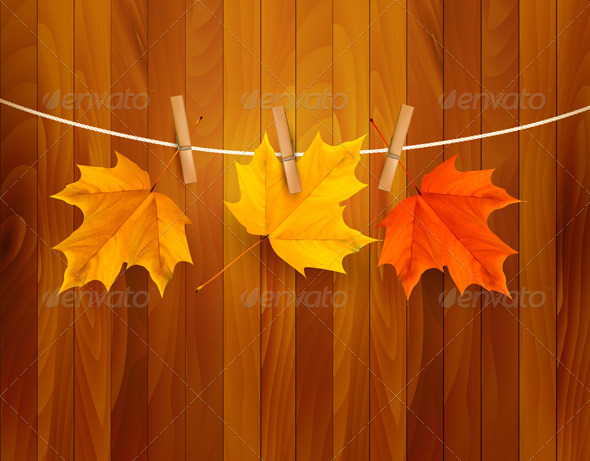 Autumn Background with Leaves Vector - Seasons Nature