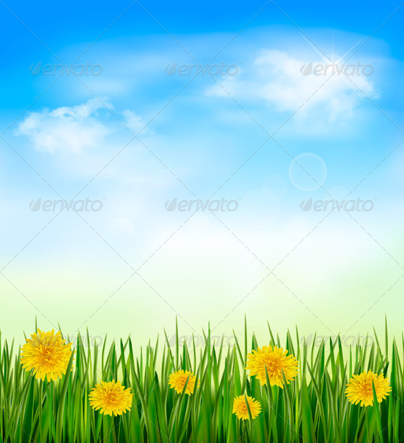 Nature Background with Green Grass and Flowers - Nature Conceptual