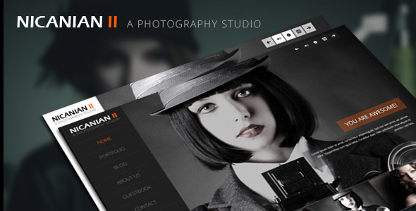 Nicanian II - Responsive WordPress Theme