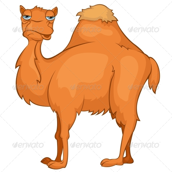 Cartoon Character Camel - Animals Characters