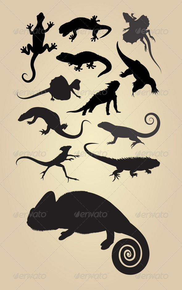 Reptilian Silhouettes - Animals Characters