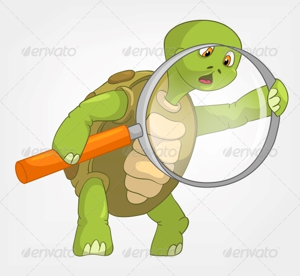 Turtle. Finding. - Animals Characters