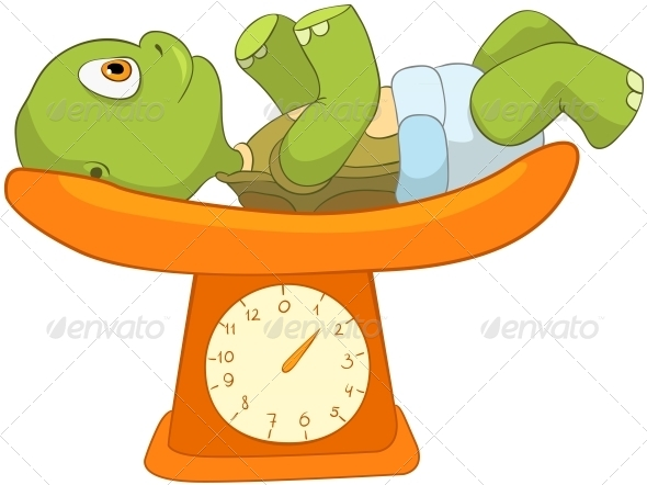 Turtle. Baby Weighing - Animals Characters
