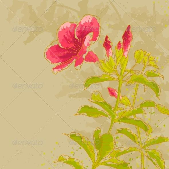 Allamanda Flower on Toned Background - Flowers & Plants Nature